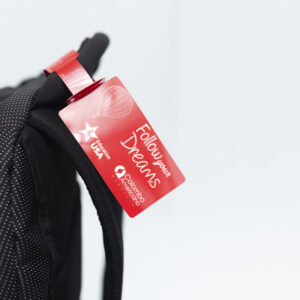 Marca maletas Teslin