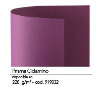 Color N14 1
