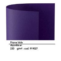 Color N16 1