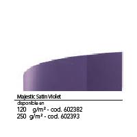 Color N17