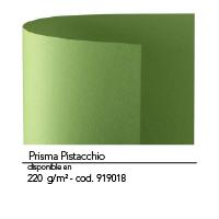 Color N22 1